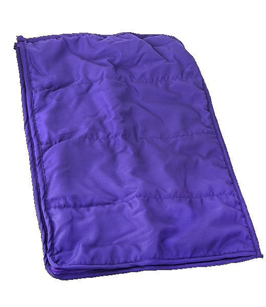 Purple Teddy Sleeping Bag